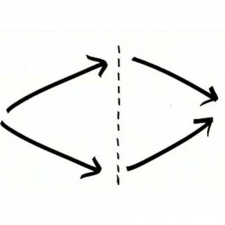 Constructing transdisciplinarity