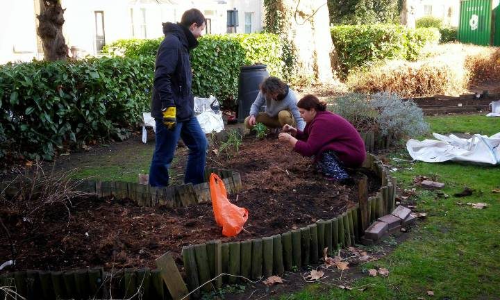 Community Garden Autumn Semester Launch