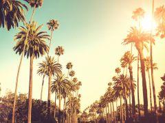 Postponed: Kingston University alumni reunion in LA