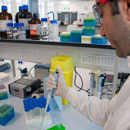 Researcher in the life sciences laboratory