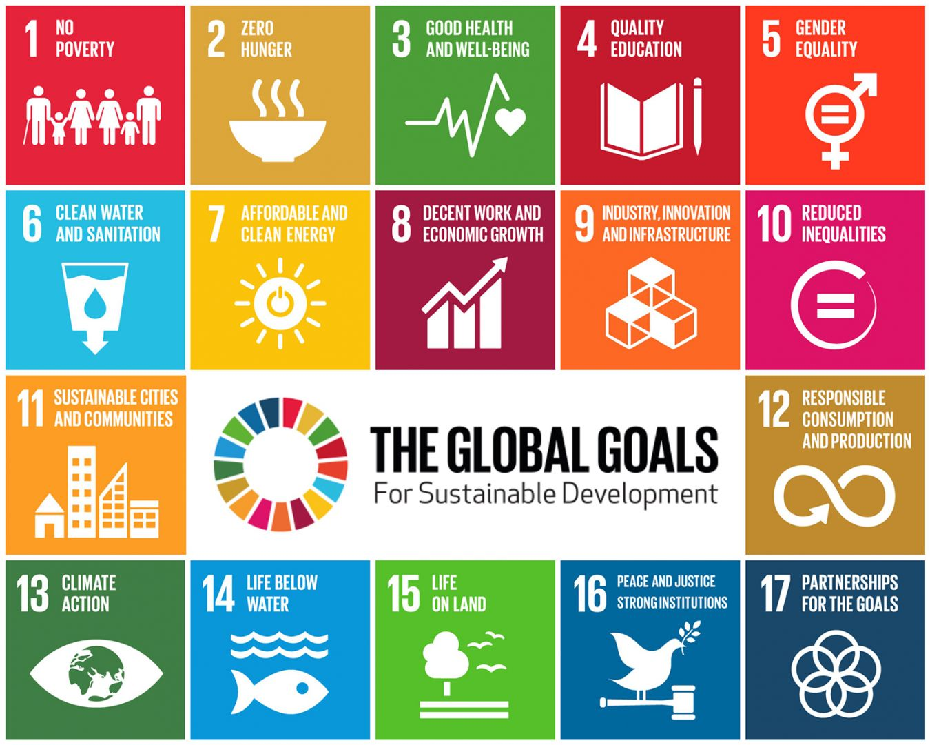 Sustainable Development Goals Picture