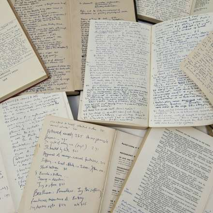 Iris Murdoch annotations in books