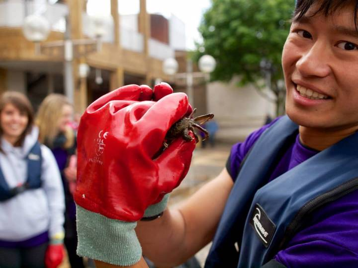 Student finds creatures in the Thames during a clean-up project