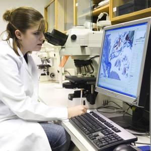 A student examining cells at Kingston University