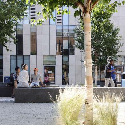 Looking over the courtyard of our Penrhyn Road campus