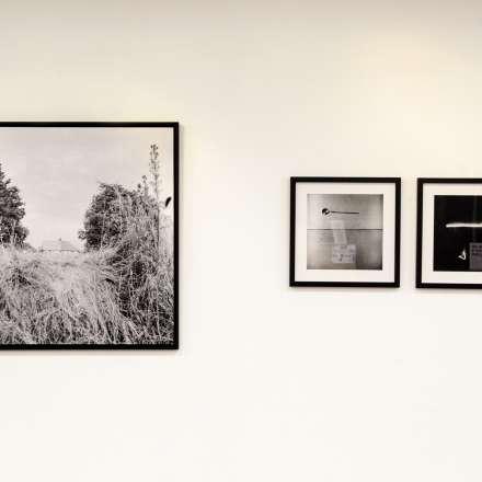 Fanger Huang, Untitled, 2014