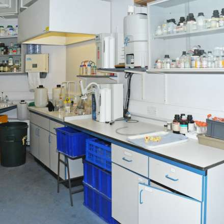 Palaeoecology laboratory