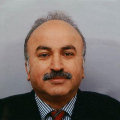 Professor Helmout Modjtahedi