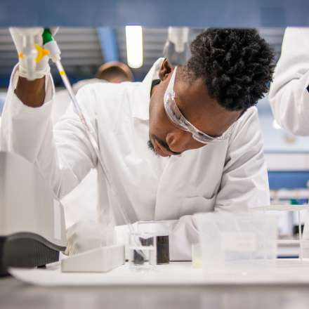 Student working independently in the laboratory