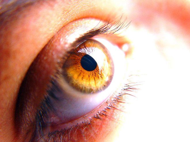 Rayner Intraocular Lenses Limited – investigating lens materials