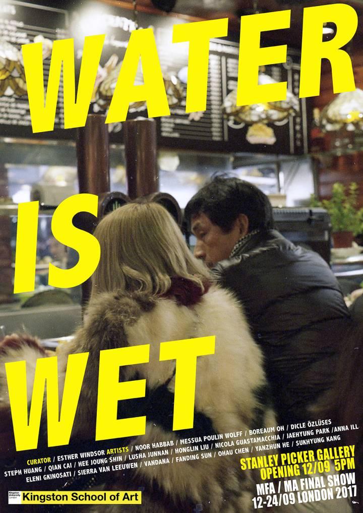Water is Wet