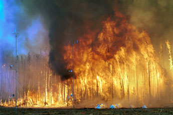 The  Sydney bush fires are likely to be among Australia's worst ever.
