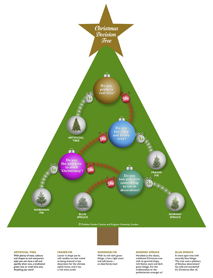 Dobbies Garden Centre customers are using Dr Gordon Hunter's Christmas decision tree as a guide to picking the perfect spruce or fir to festoon with decorations.