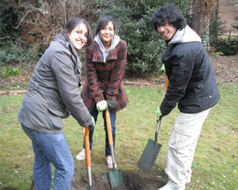 Students Mahreen Bhatti, Yasmeen Abdel Bari and Martin Tran helped to ensure Dora's garden continues to bear fruit.