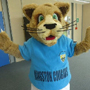 Kingston Cougars
