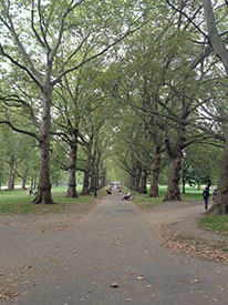 So this is Hyde Park!