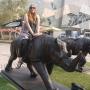 Study abroad year - Kingston University London